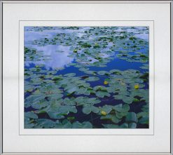 Pond Lily Reflection, matted, framed by John Barger. (Landscape Photography)