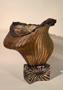 Pandora's Box by Virginia Harrison (Woven Sculpture)
