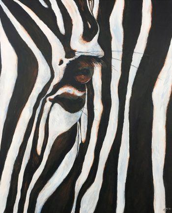 Zebra I by Pamela Heck (Acrylic Painting)