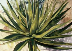 Cactus by Rebecca Gabriel (Oil Painting) | American Artwork