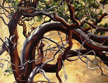 Manzanita by Rebecca Gabriel (Giclée Print on Canvas) | American Artwork